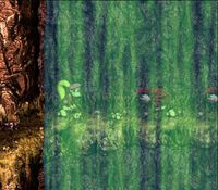 Donkey Kong Country 3 sur Nintendo Super Nes